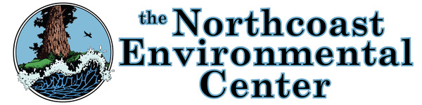 NEC Horizontal logo